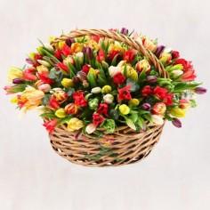 Доставка цветов в аэропорт домодедово подарок подарить мужчине 23 февраля